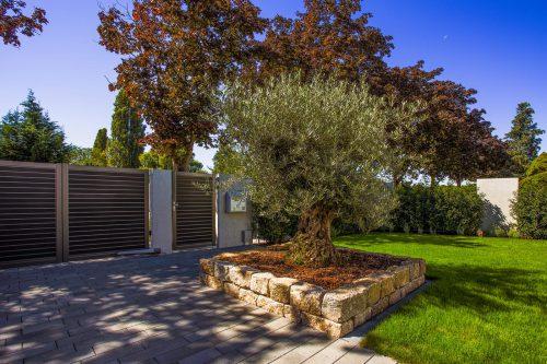architektonische pr zision weiland gr nbau garten und landschaftsbau aus mannheim. Black Bedroom Furniture Sets. Home Design Ideas