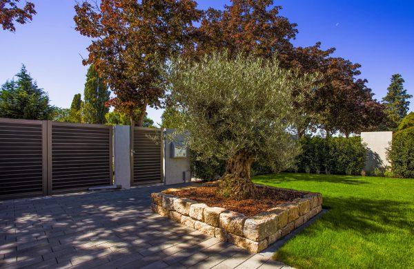 Architektonische pr zision weiland gr nbau garten und - Garten und landschaftsbau mannheim ...