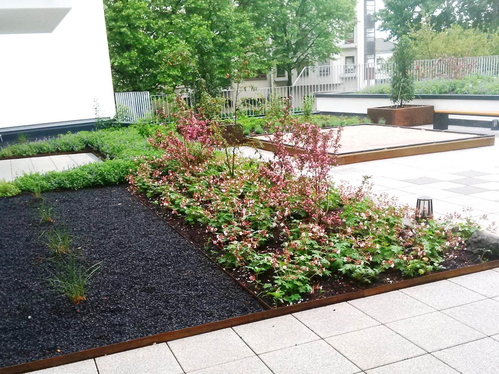 dachbegr nungen weiland gr nbau garten und landschaftsbau aus mannheim. Black Bedroom Furniture Sets. Home Design Ideas